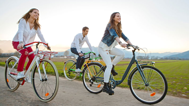 Biciclette per adulti